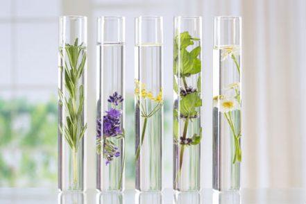 aromatherapie_couleur