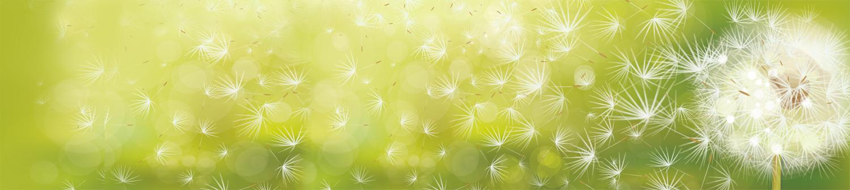 Combattre les allergies, grâce à la méthode NAET